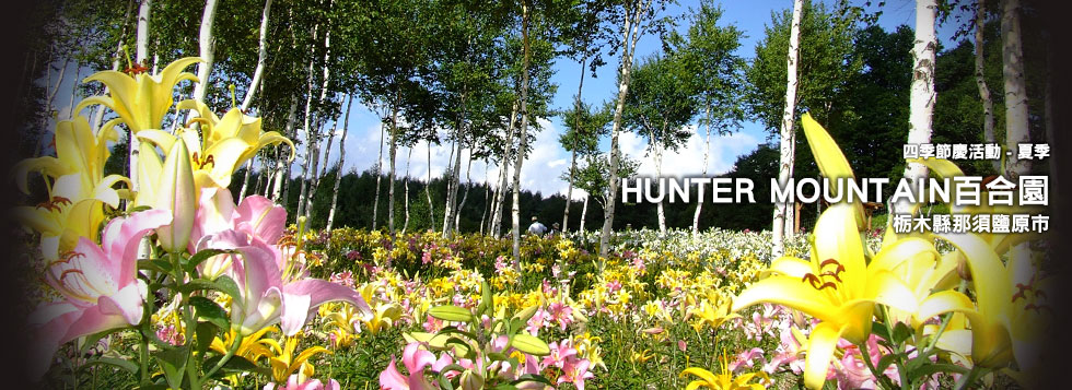 HUNTER MOUNTAIN百合園